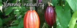 Chocolate Farming and Gender Inequality