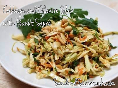 Sand and Succotash | Cabbage and Cilantro Slaw with Peanut Sauce