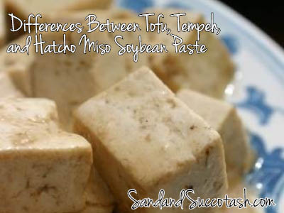 Sand and Succotash | Differences Between Tofu, Tempeh, and Hatcho Miso Soybean Paste